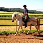Passejades a Cavall - 9788b-passejades-a-cavall.jpg